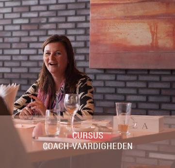 cursus-coachvaardigheden-widgetbar-01